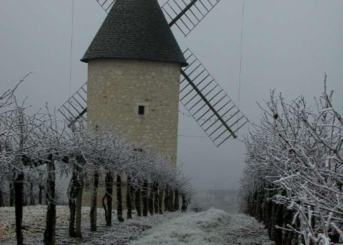 image de Le Moulin de Marquet, dans les vignes de Villeneuve-de-Duras
